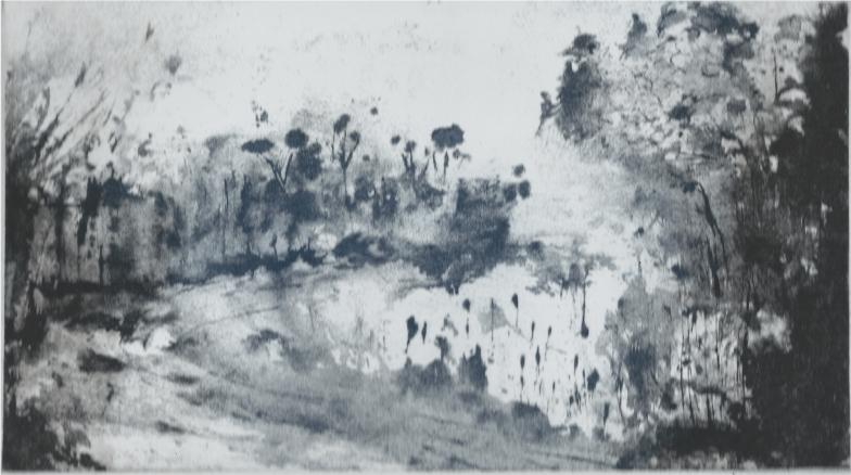 Devonscape, 24 X 14 cm